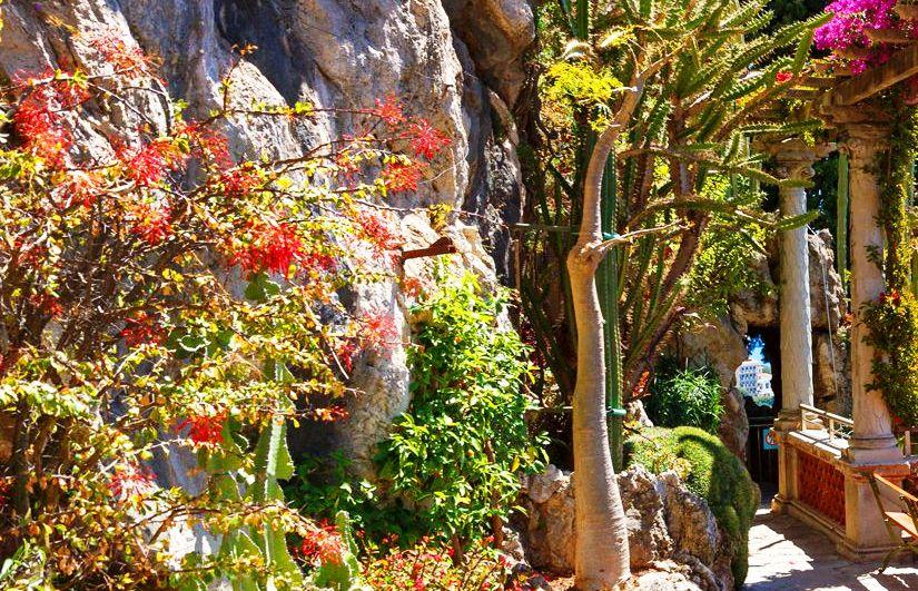 Экзотический сад Княжества Монако (Le Jardin-Exotique de Monaco)
