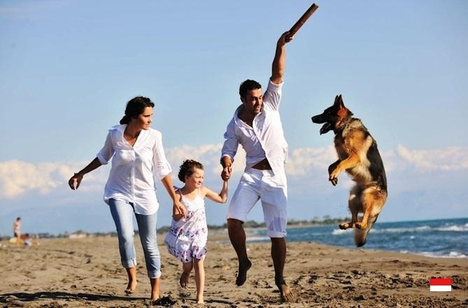 Семейный пляжный отдых в Монако